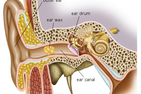 Blackburn clinic state of the art ear wax micro suction machine state of the art ear wax micro suction machine ccuart Image collections